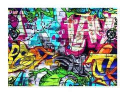 Baumwolle-Jerseystoff  Grafitti - bunt
