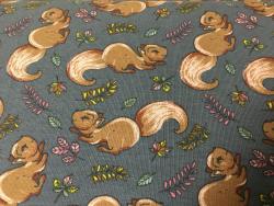 Kinder-Baumwoll-Jersey Eichhörnchen
